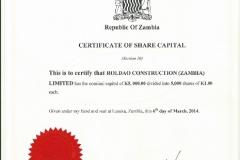 Roldao-Construction-Zambia-Companies-form-10